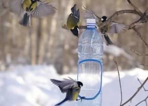 Comment faire un chargeur pour les oiseaux sur l'intrigue avec leurs propres mains