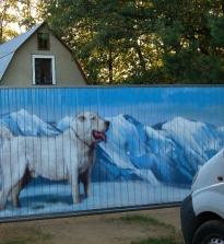 Як правильно пофарбувати паркан своїми руками, технологія фарбування паркану на дачній ділянці