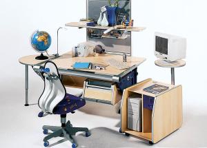 Kako pravilno organizovati radno mesto