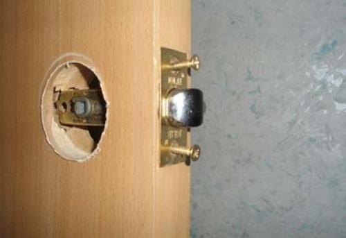 dver6-500x343