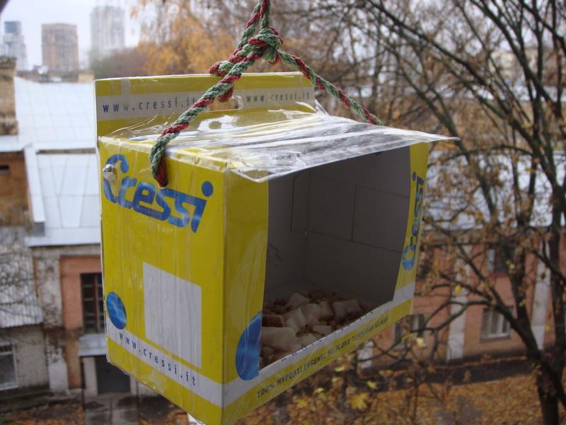 Кормушки для птиц своими руками из картонных коробок фото
