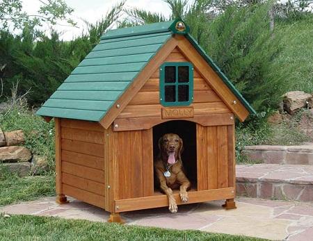 Чертеж конуры для собаки