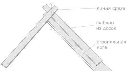template untuk kaso