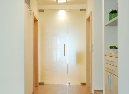 stekliannye-dvery3