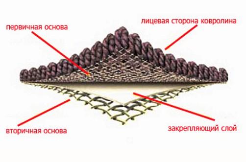 struktūra