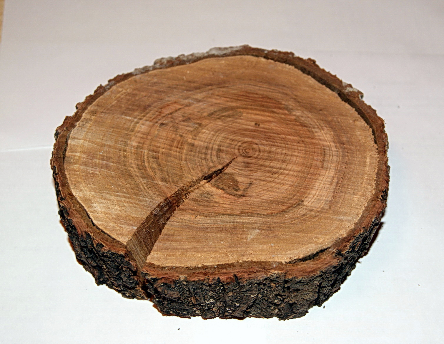 Чем обработать спилы дерева для декора