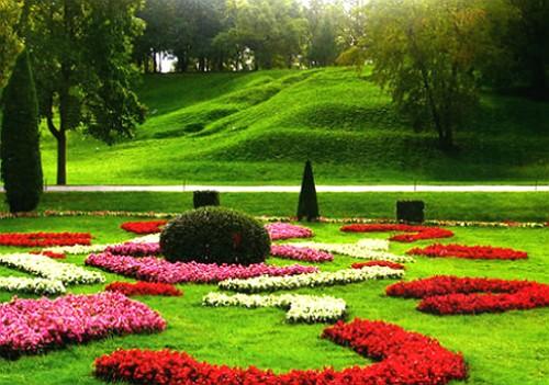 естественная-форма-газона