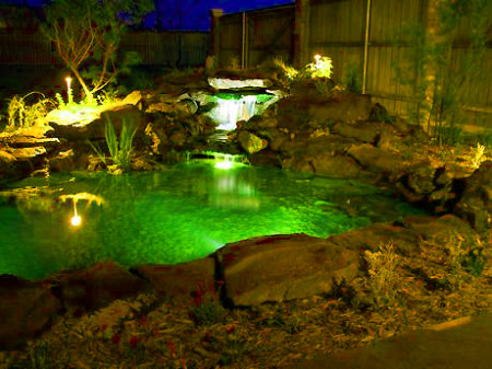 pond_light