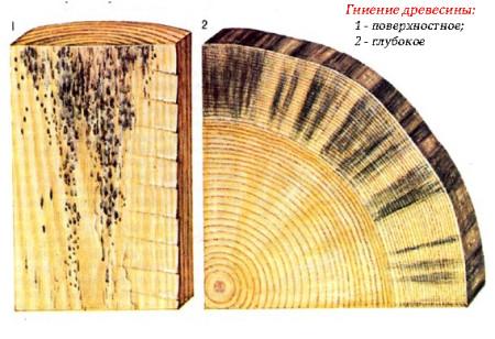 gnienie-drevesiny