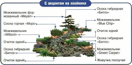 suhiy_ruchey10