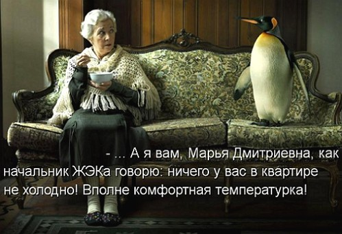 kotomatritsa_qO